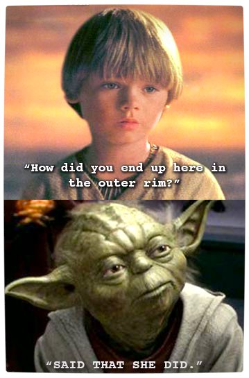 Vamers - Humour - Said That She Did - A Meme By Yoda - Rim