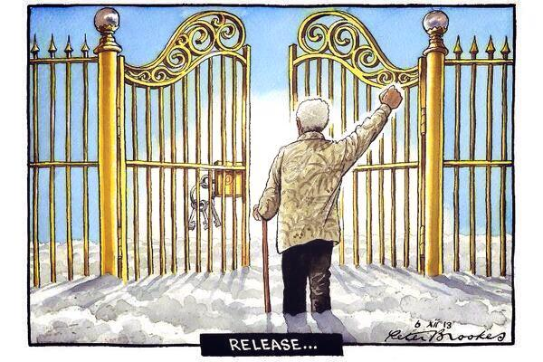 Vamers - FYI - Rest in Peace, Tata Madiba - Peter Brookes 'Release'
