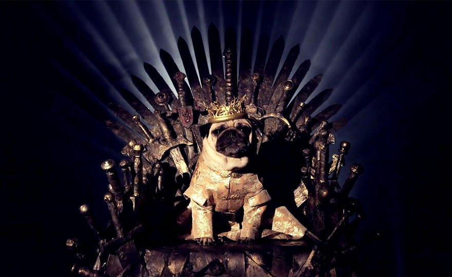 Vamers - Geekosphere - Mash-Up - The Pugs of Westeros star in A Game of Bones Dinner is Coming - King Joffrey