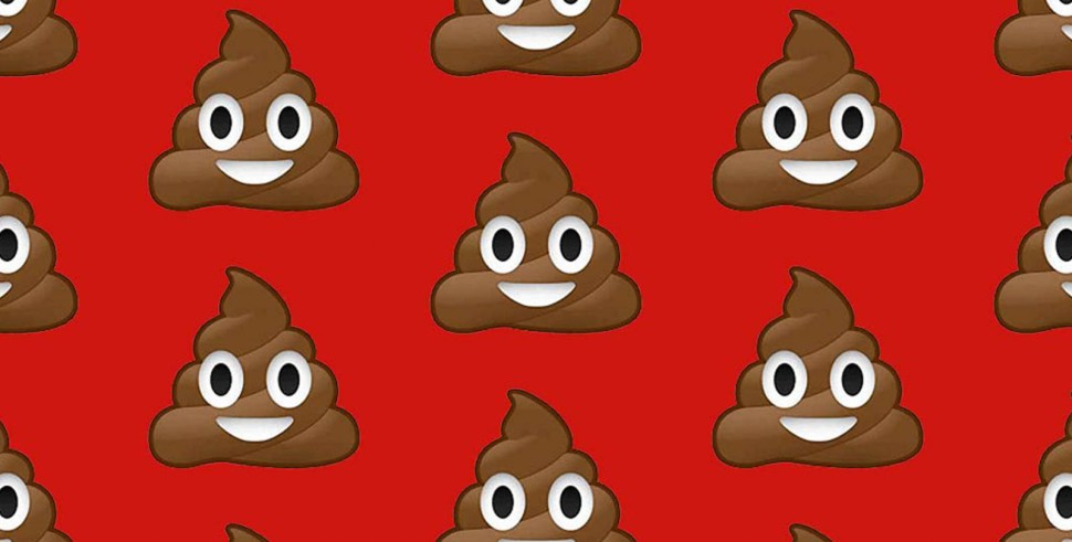 Vamers - FYI - Vamers Store - The Poop Emoji Plush Cushion is a Great Conversation Starter - Banner