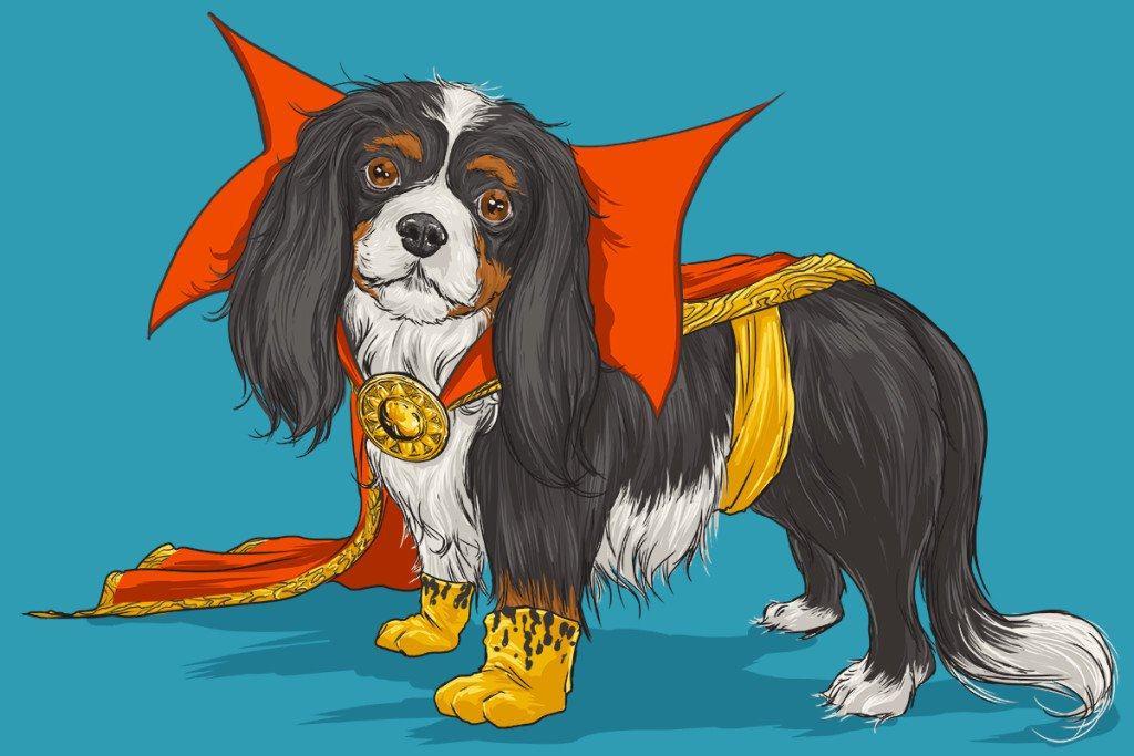 Vamers - Artistry - Fandom - Artist Josh Lynch Imagines Dogs as Superheroes from the Marvel Universe - Doctor Strange