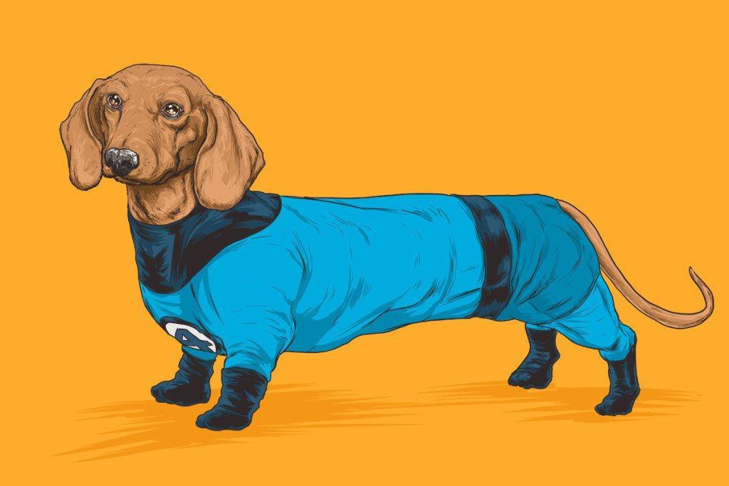 Vamers - Artistry - Fandom - Artist Josh Lynch Imagines Dogs as Superheroes from the Marvel Universe - Mr Fantastic