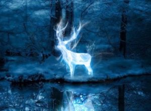 vamers-fyi-geekosphere-pottermore-now-lets-you-discover-your-patronus-banner-01